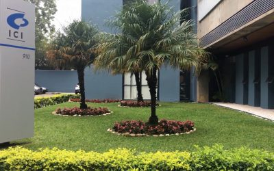 Consultoria SAP em Londrina. Maringá e Curitiba: case de sucesso SAP B1 - frente da emrpesa